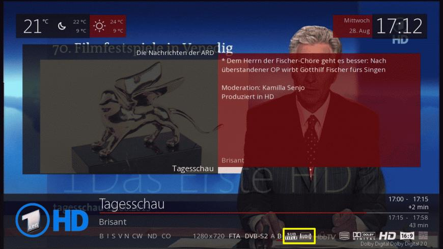 Preview Subtitle and Audio Info in SecondInfoBar
