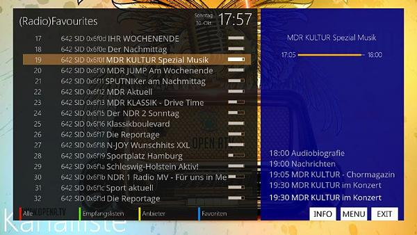 RDS Radiotext auf LCD Display-radio.jpg