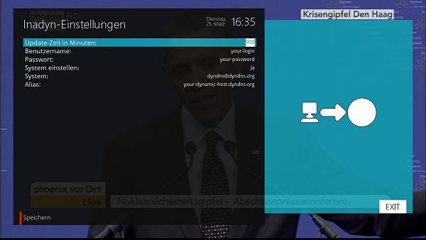 Inadyn / Plugin /DynDns-grab.jpg