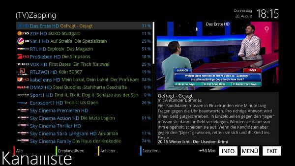 MetrixHD - selbsterstellte Skinpart`s-screenshot-kanalliste.jpg